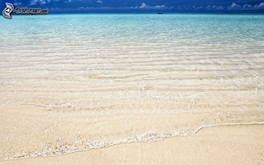 sandstrand, hav