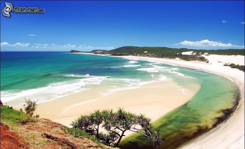 sandstrand, havsutsikt, kust, blå himmel