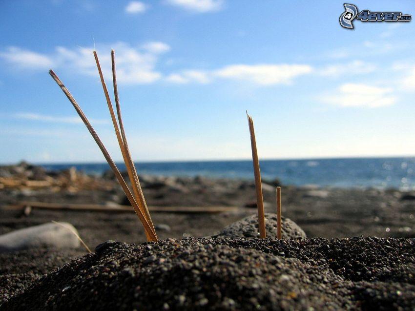 skaft, stenig strand, hav