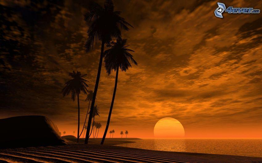 solnedgång över hav, Afrika, palmer, tropisk ö, moln