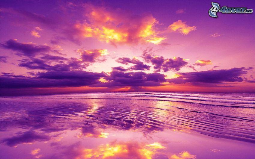 solnedgång över hav, kvällshimmel, lila himmel