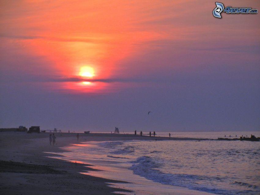 solnedgång över hav, sandstrand