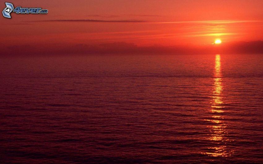 solnedgång över havet, röd himmel, reflektion av solen