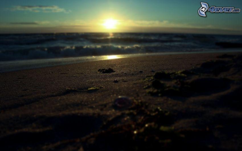 solnedgång över havet, sandstrand, vågor