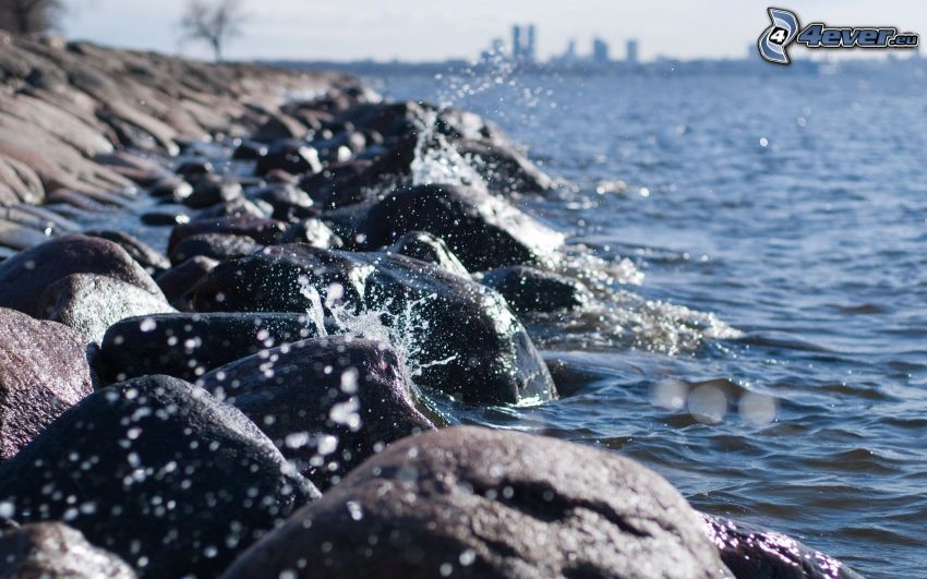 stenig kust, hav