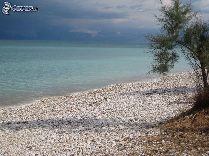 stenig strand, azurblå hav, buske