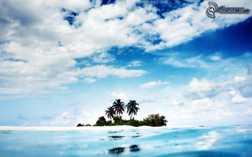 tropisk ö, palmer, hav, moln