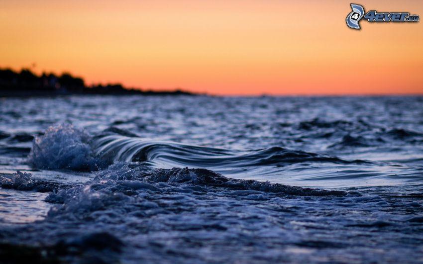 vågor, efter solnedgången, hav