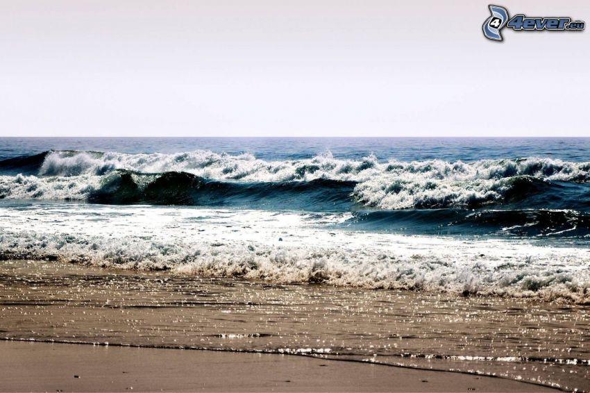 vågor vid kusten, strand, hav