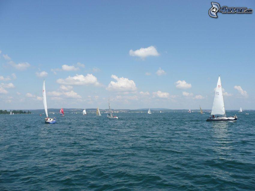 yachter, segelbåtar, hav