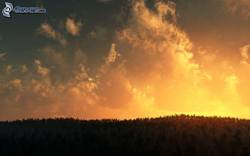himmel, moln, horisont