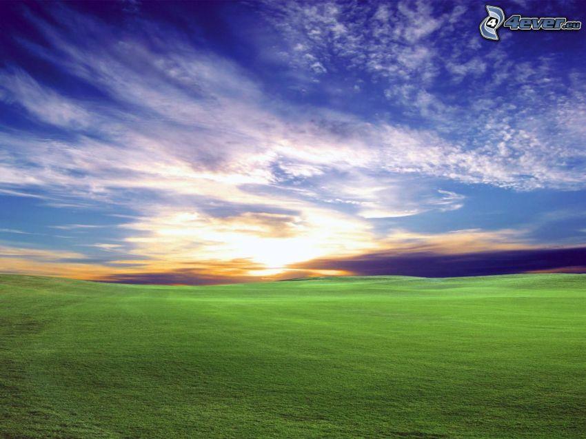 landskap, äng, gräs, moln, himmel