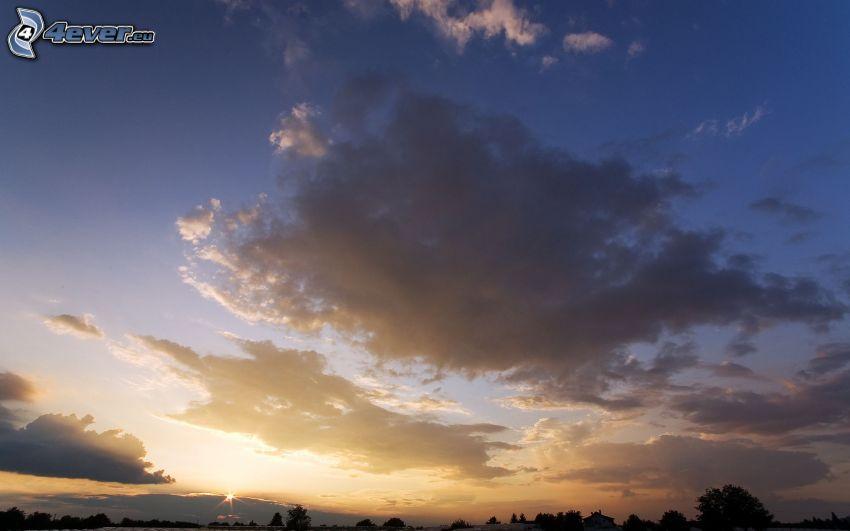 moln, solnedgång, siluetter av träd
