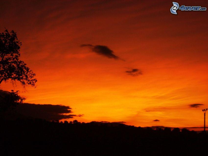 orange solnedgång, silhuett av horisont