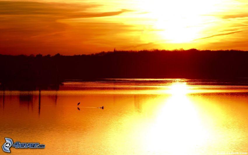 orange solnedgång, vattenyta