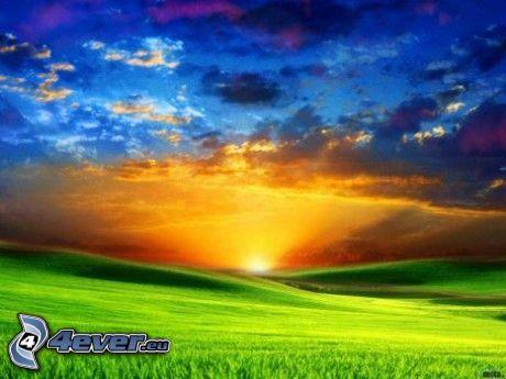 solnedgång över äng, grön äng, moln