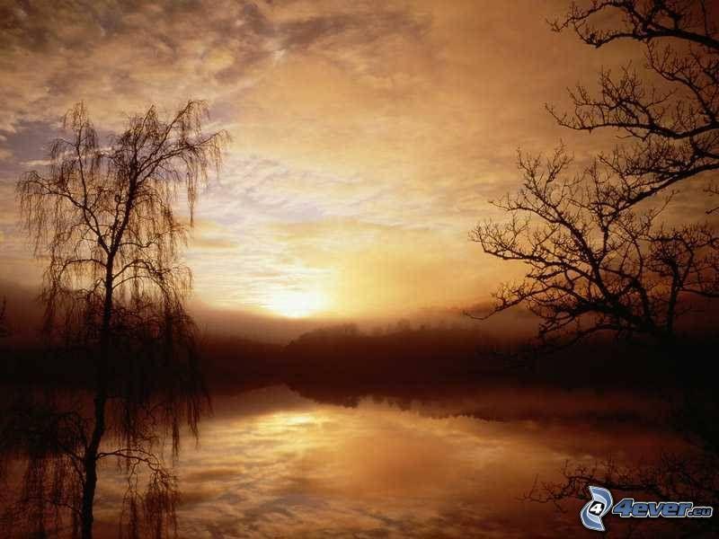 solnedgång över sjö, träsk, siluetter av träd, dimma över sjö