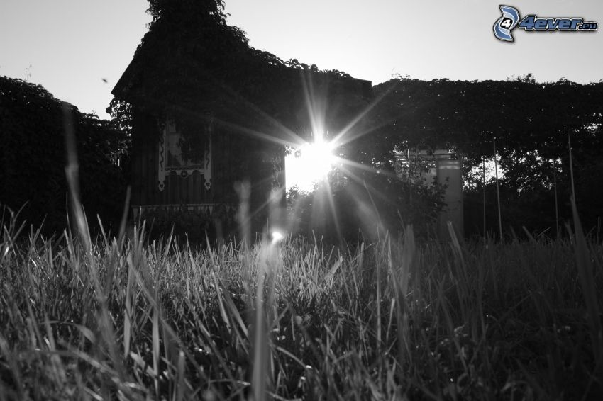 solstrålar, byggnad, svartvitt foto