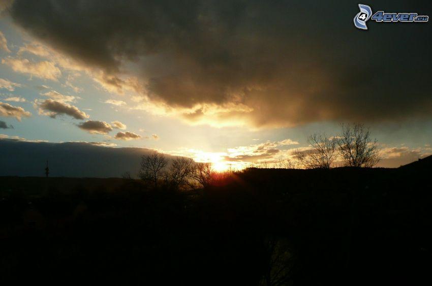 soluppgång, moln, horisont