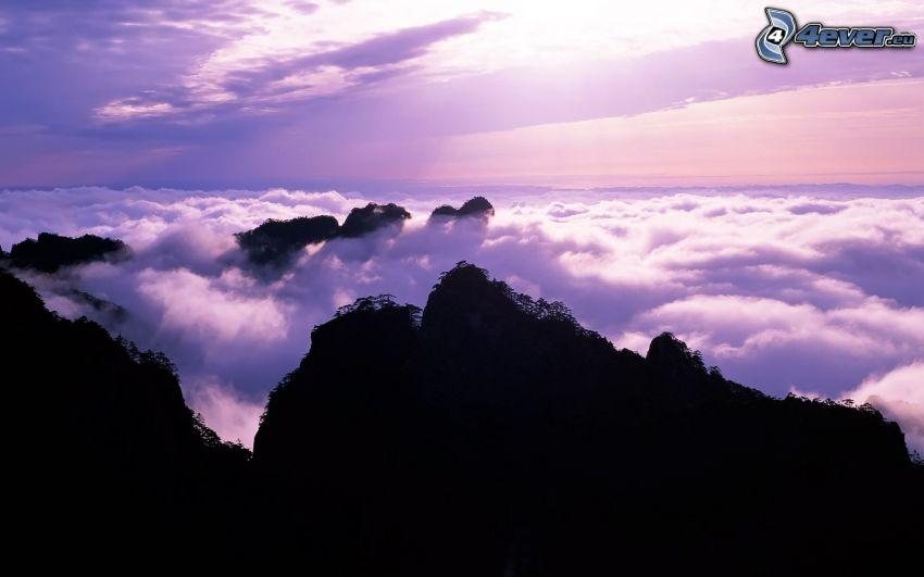 inversion, ovanför molnen, klippiga berg, lila himmel