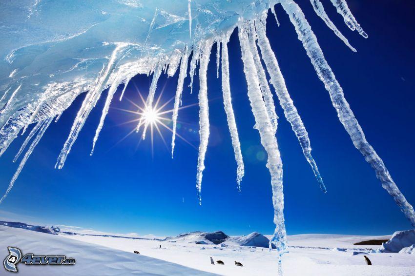 istappar, sol, snöigt landskap