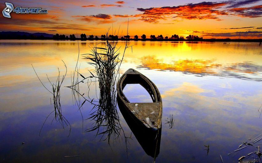 kanot, skeppsbrott, efter solnedgången, sjö