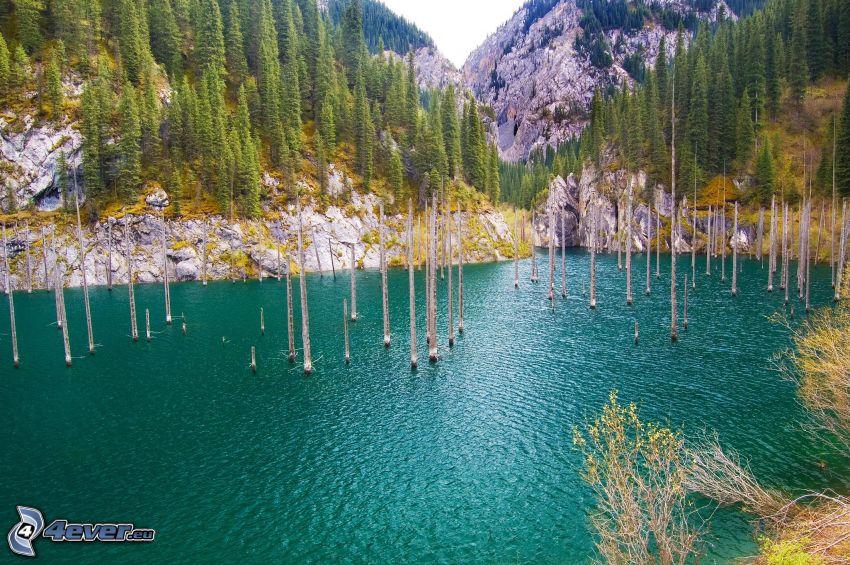 Kolsai Lakes, klippor, träd