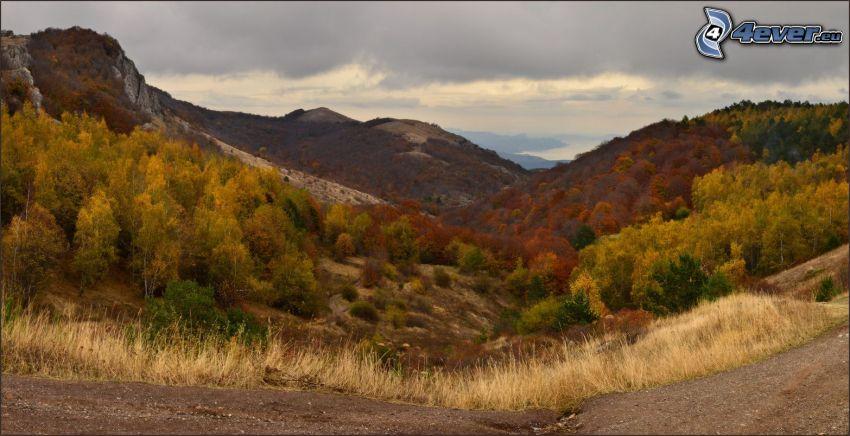 kullar, färgglada höstträd
