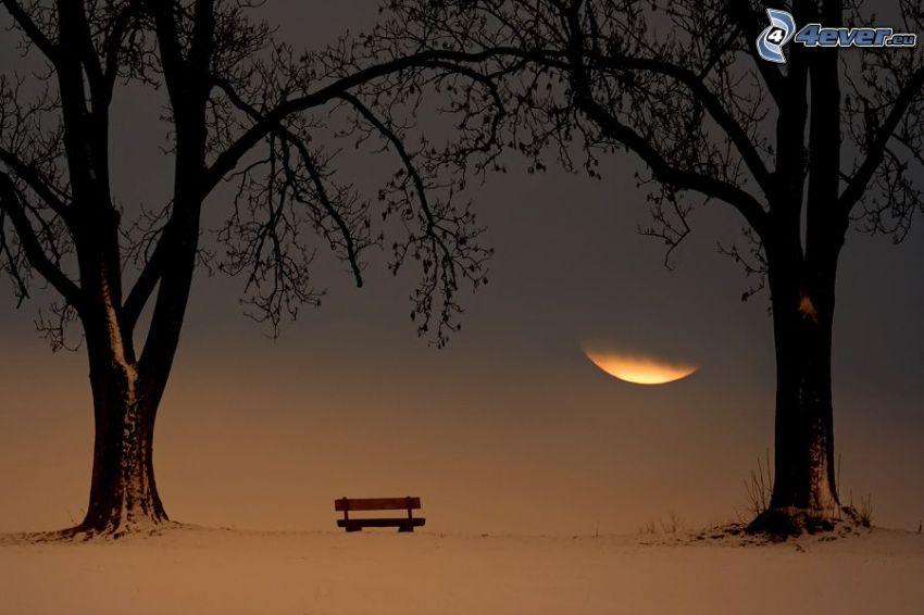bänk i park, träd i park, måne, snö