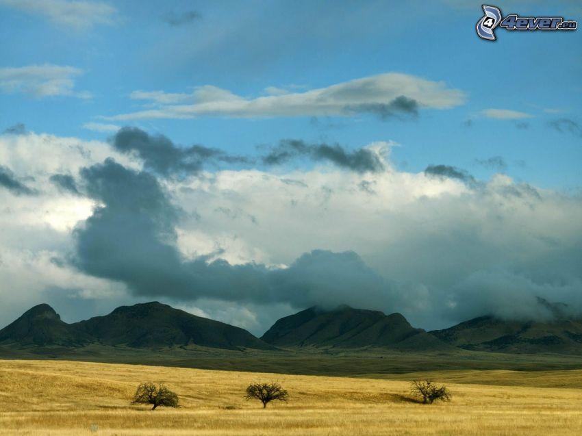 bergskedja, himmel, äng, moln