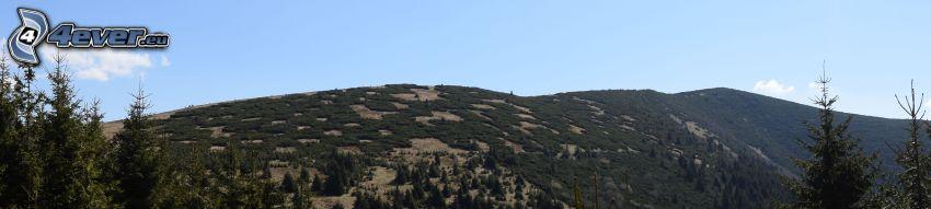 bergskedja, panorama