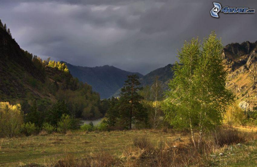 björkar, träd, steniga kullar, flod, moln