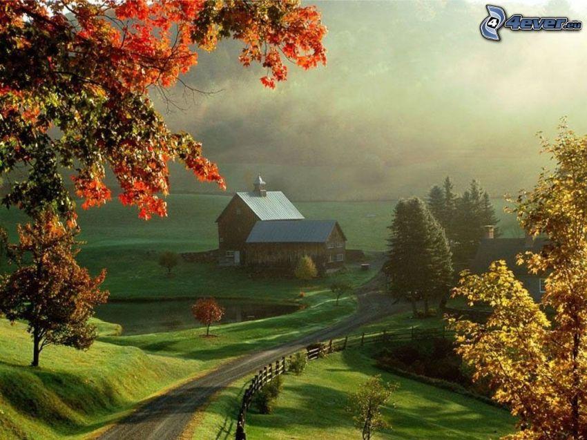 bondgård, trähus, natur, äng, väg, trästaket