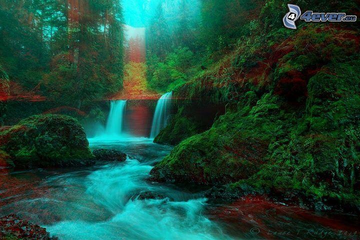 djungel, bäck, vattenfall, skog