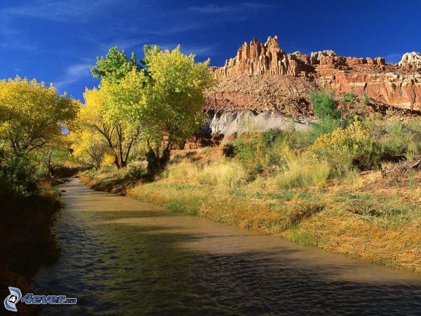 flod, gula träd, steniga kullar