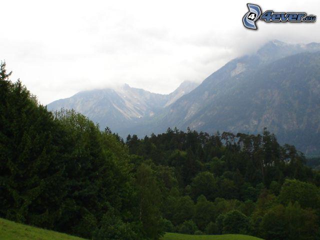 höga berg, landskap