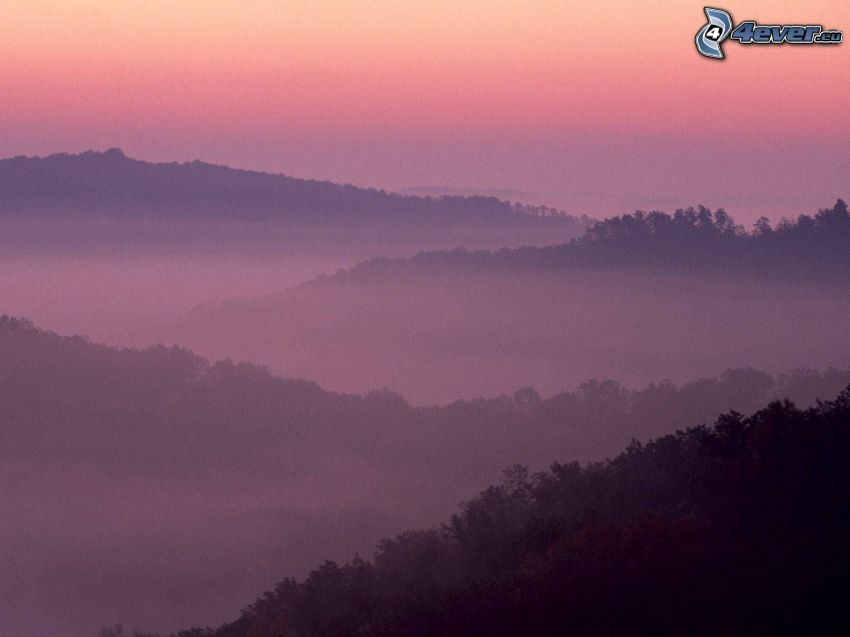inversion, skog, kullar