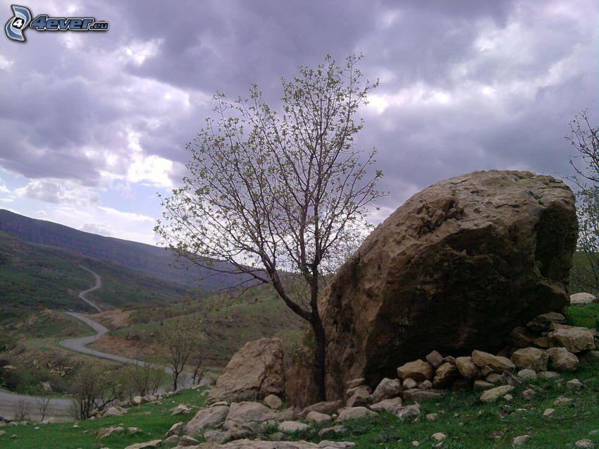 landskap, stenbumling, stenar, träd, kulle, väg