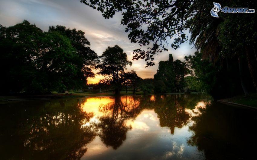 lugn sjö på kvällen, park vid solnedgången, träd, spegling