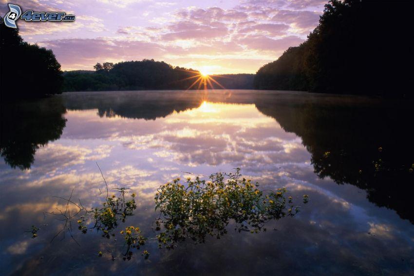 lugn sjö på kvällen, solnedgång