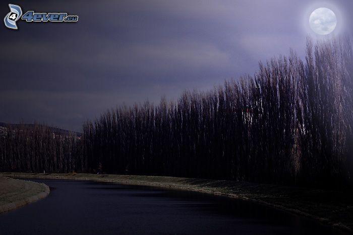 natt, flod, Nitra, måne