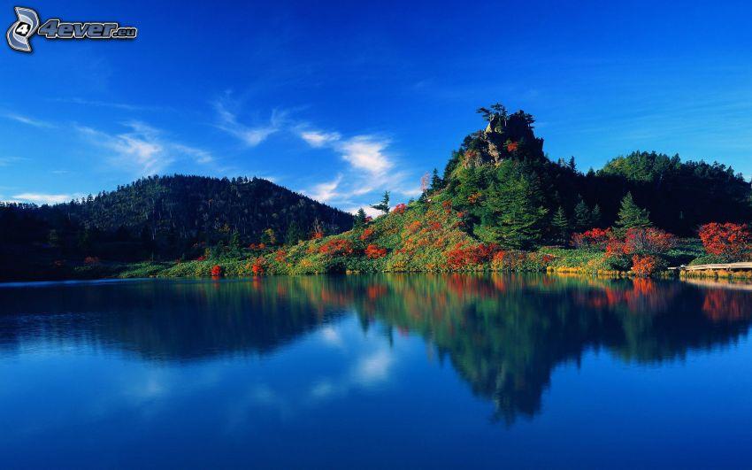 sjö, färggrann skog, kulle, lugn vattenyta, Japan