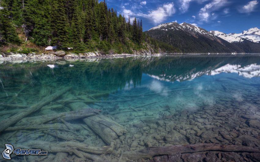 sjö, snöig bergskedja, skog