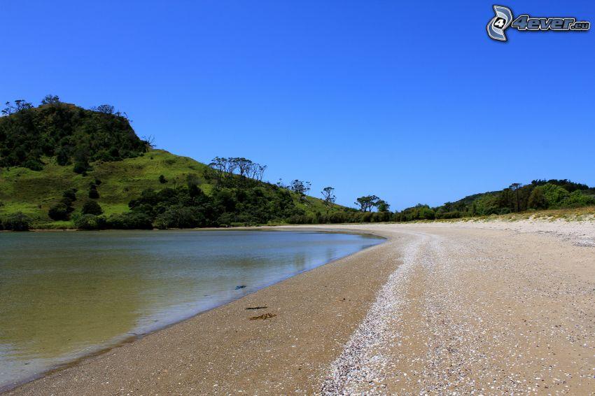 sjö, strand, kulle, träd, blå himmel