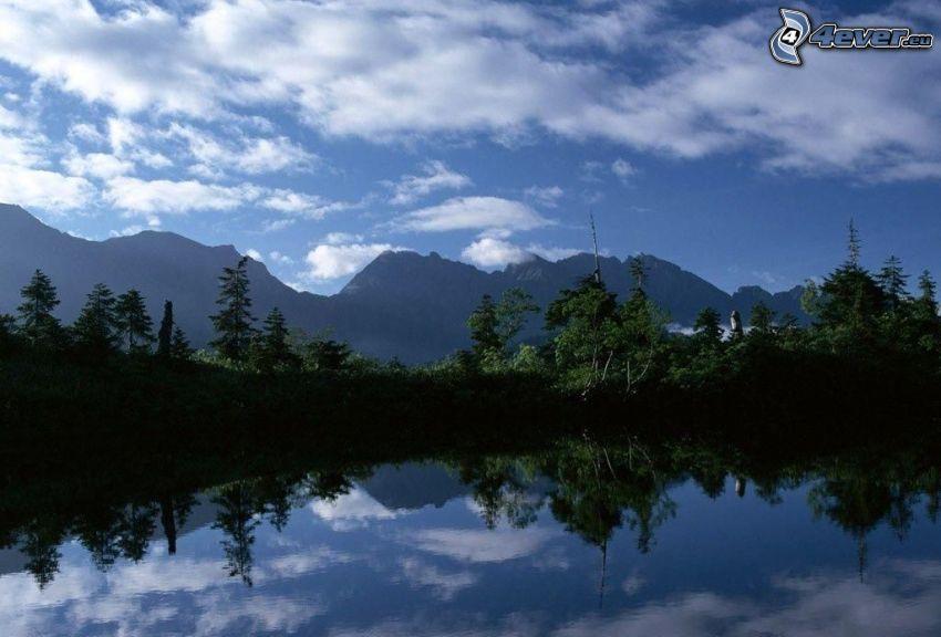 sjö, träd, kullar, spegling