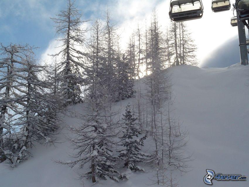 skidlift, linbana, snöklädda träd, snö