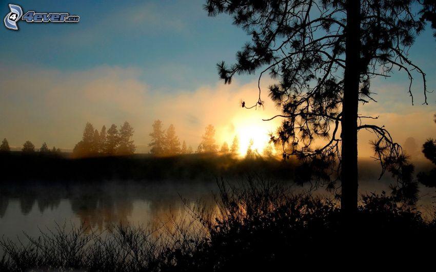 solnedgång, dimma över sjö