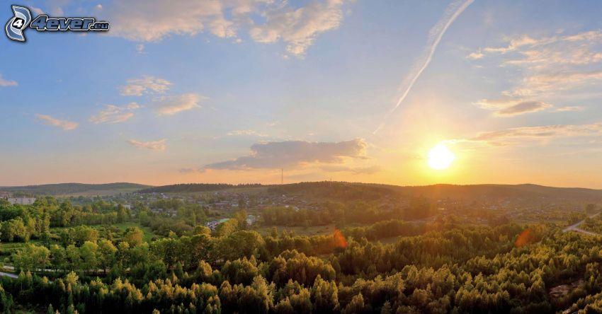 solnedgång, träd