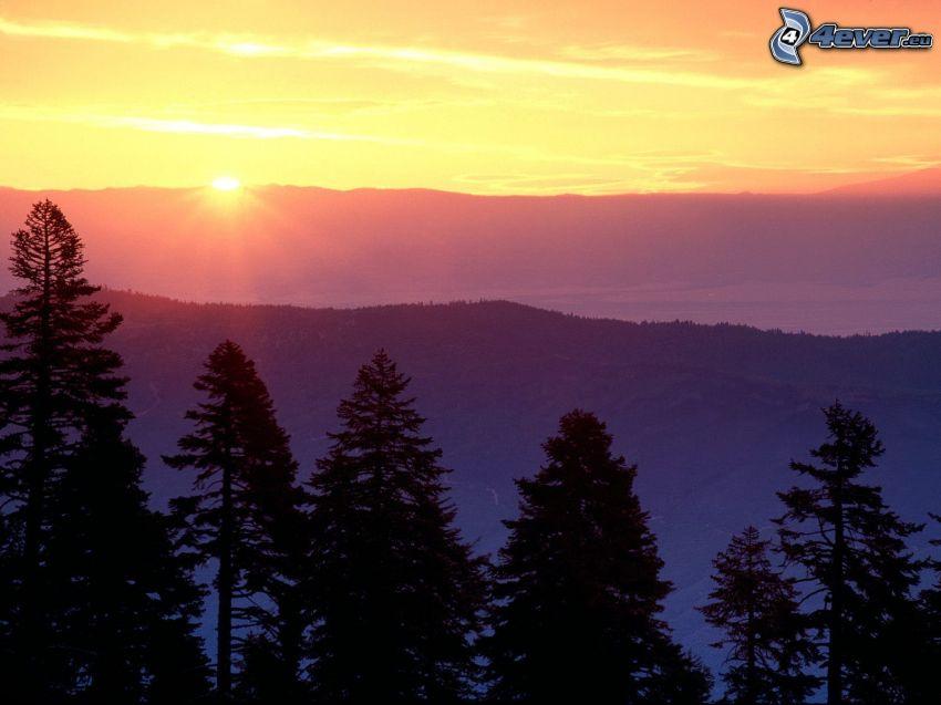 solnedgång bakom bergen, siluetter av träd, bergskedja