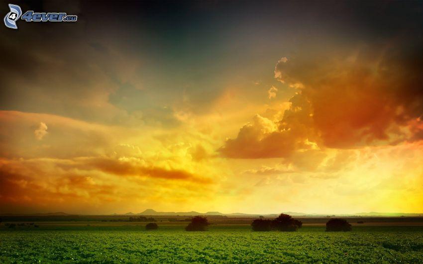 solnedgång bakom fält, landskap